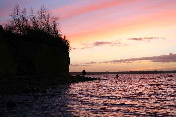 Langeland bietet viele Topstellen für den Fang von Meerforellen.