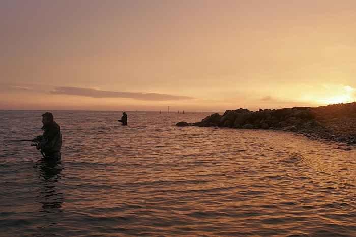 Besonders in der Dämmerung stehen die Chancen gut sich ein Stück Langelandsilber zu angeln.