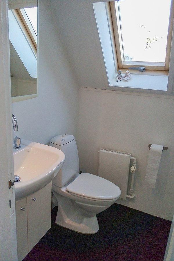 Das Bad mit Waschbecken, Dusche und WC