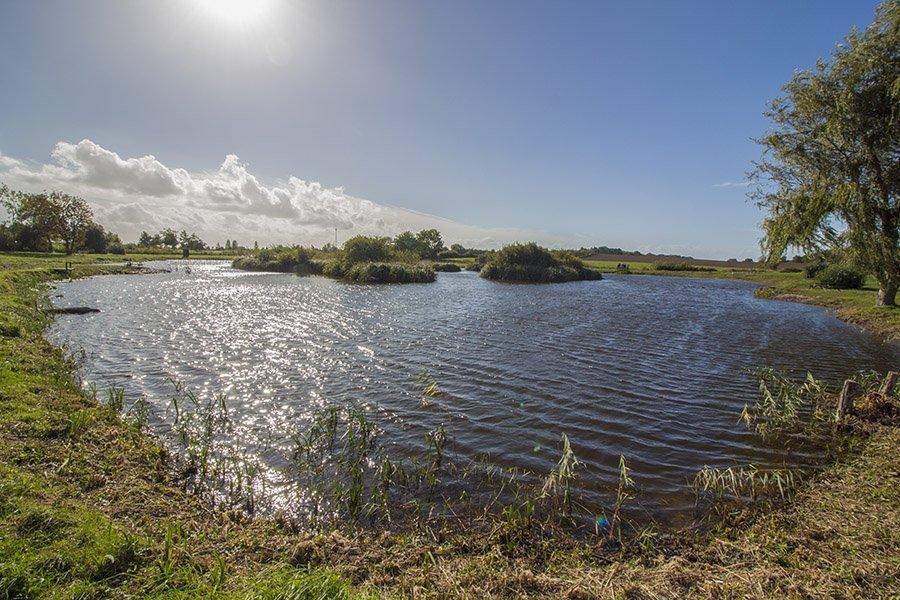 Etwa 10 Minuten vom Ferienhaus entfernt liegt der Put & Take-See Langelands Lystfiskersø
