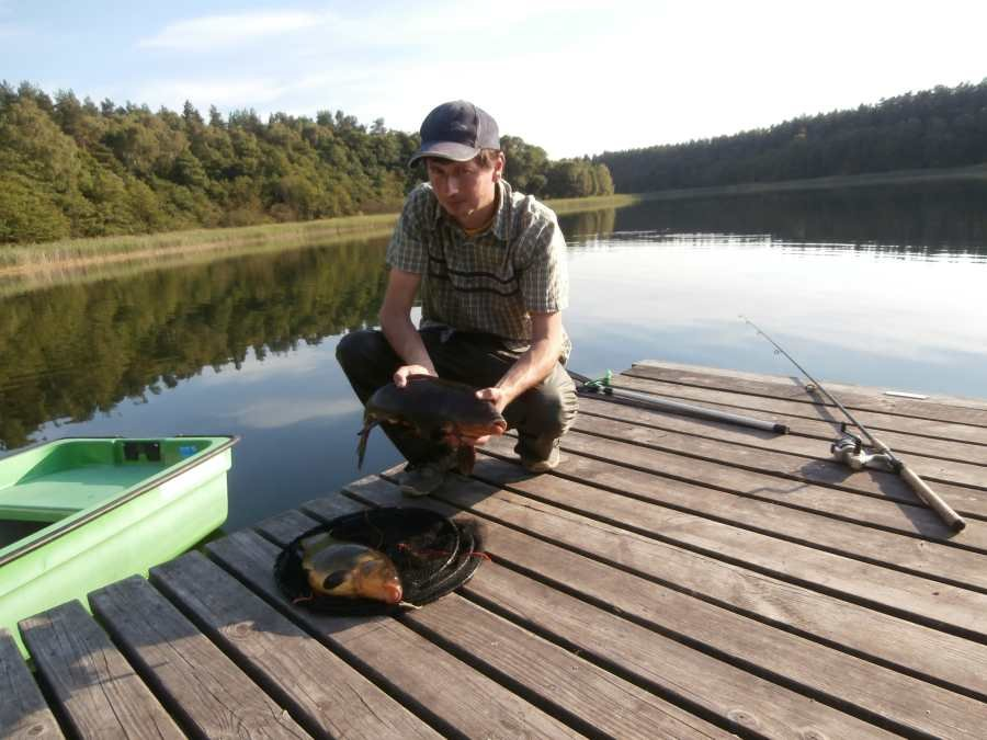Hoher Bestand an Schleien und Karpfen im Kastavensee
