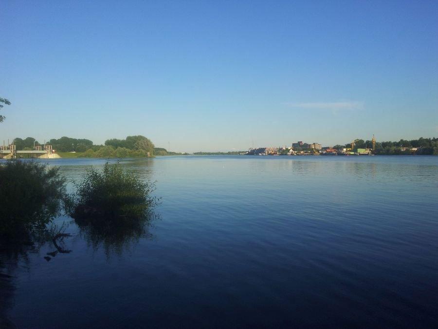 Die Billwerder Bucht: Ein bekannter Zander-Spot in der Nähe Ihrer Unterkunft