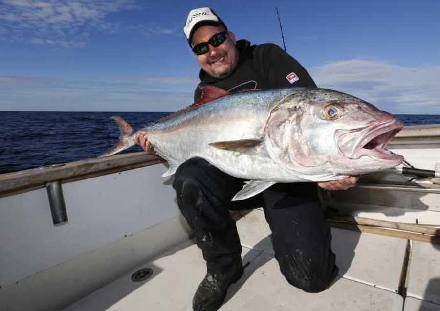 Jig den Jack! Dieser Amberjack von 80 Pfund wurde im Januar 2013 vor Pakostane gefangen.