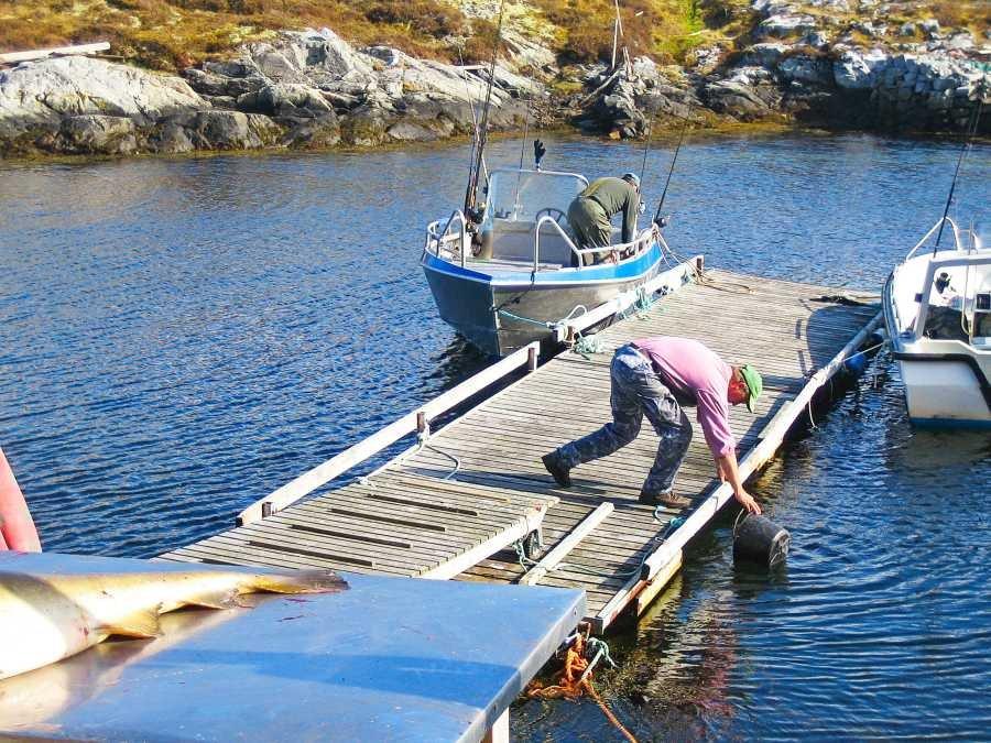 Der Steg mit den Booten
