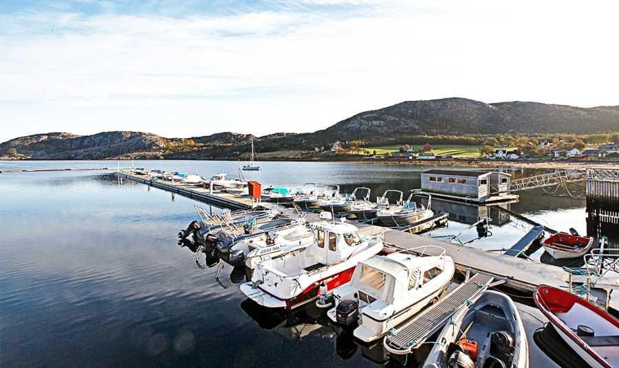 Der Hafen in Vik