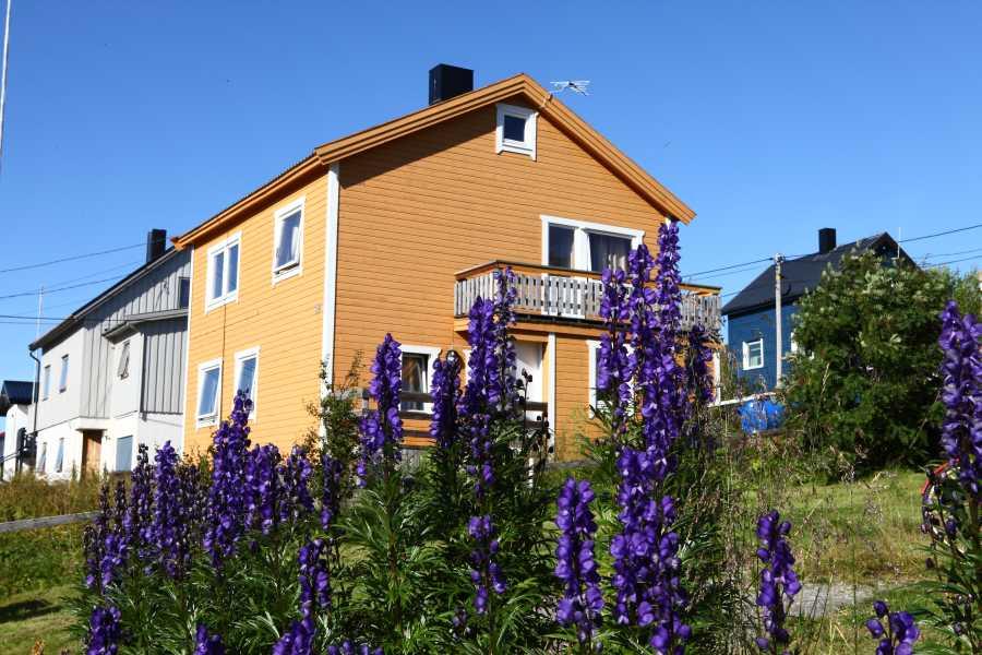 Havøysund Haus 1