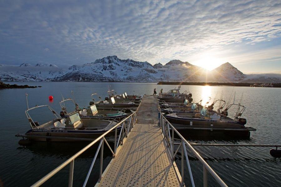 Der Hafen mit 15 19-Fuß-Alubooten und einem 24-Fuß-Kværnø-Kabinenboot mit 150-PS-Außenborder.
