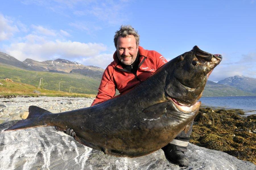 45 Kilo Heilbutt aus dem Lyngenfjord.