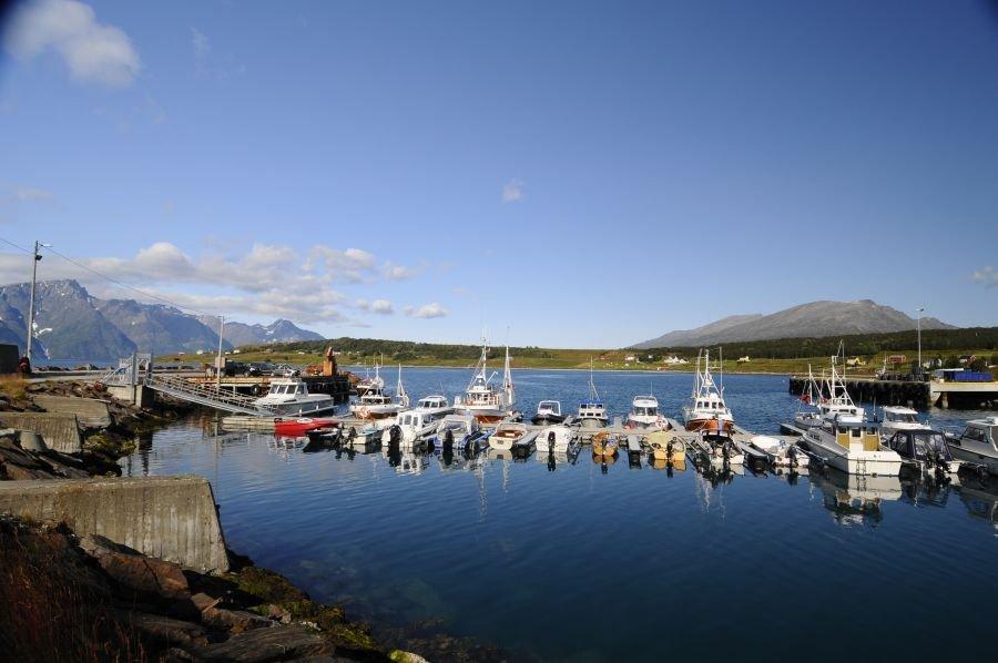 Der Hafen - 200 Meter vom Camp entfernt.