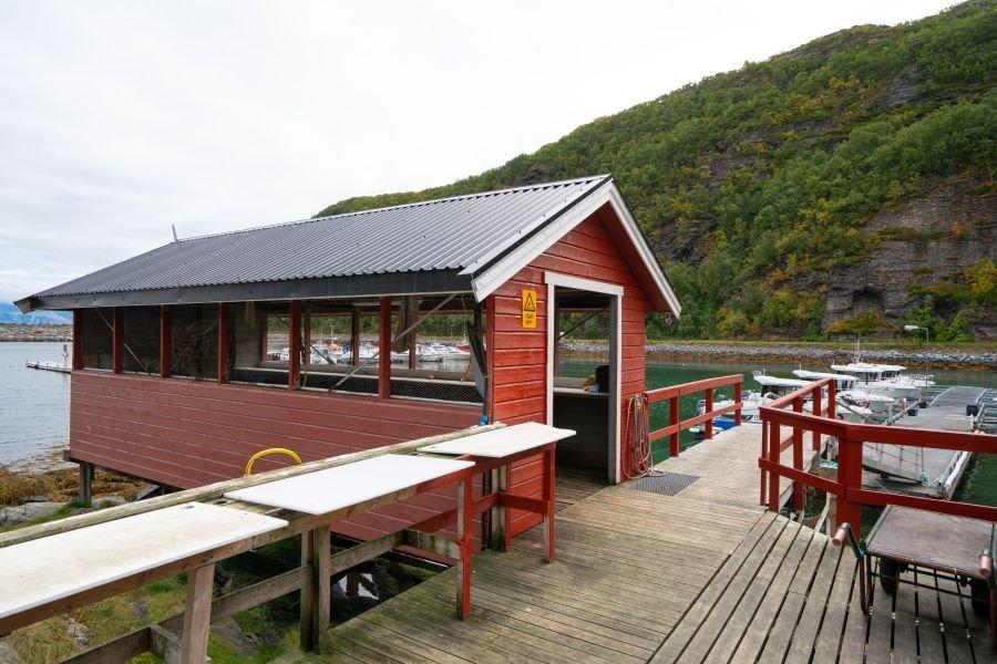Das große Filetierhaus direkt am Bootssteg. Nebenan befindet sich ein großes Gefrierhaus für Ihre Fänge.