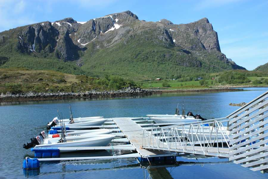 Die Boote liegen nur einen Steinwurf von den Ferienhäusern entfernt.