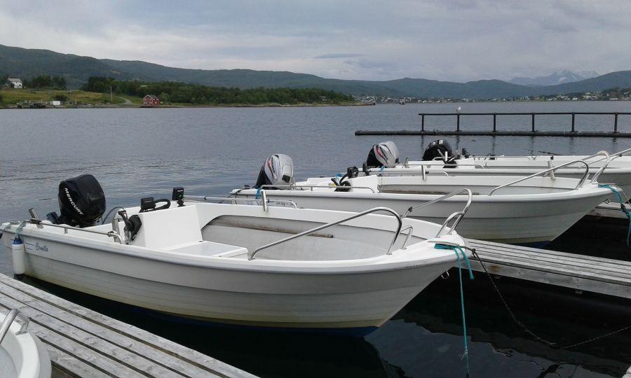 Die Furøy-Flotte: stabile GFK-Boote, 18 Fuß/25 PS, 4-Takt-Außenborder, Steuerstand und Echolot.