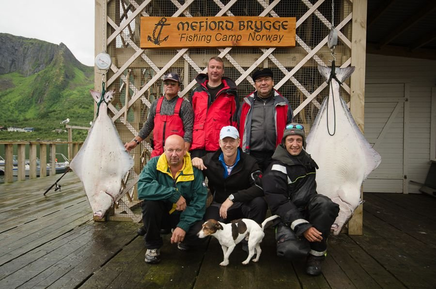 Mefjord Brygge bedeutet Heilbutt!