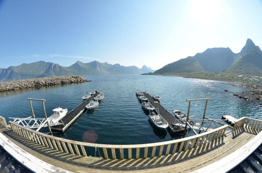 Top auf Senja mit 19-Fuß-Aluminiumbooten: Mefjord Brygge!