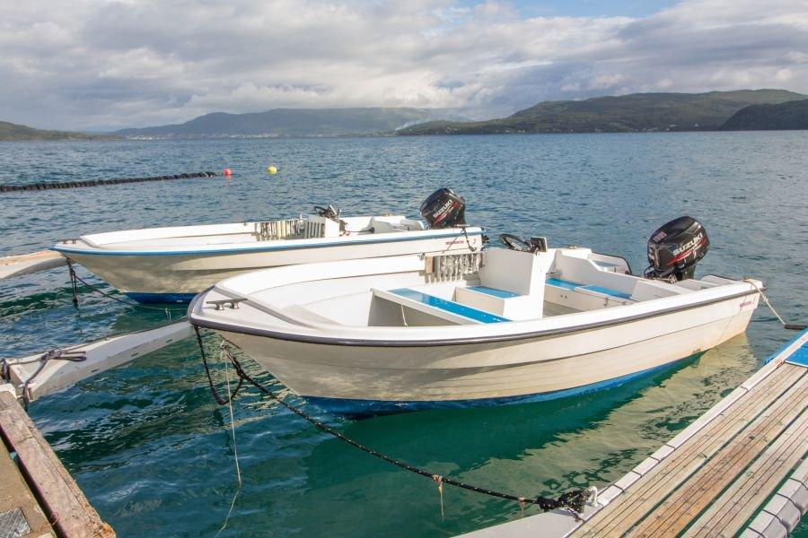 Gehören zur Flotte: 18 Fuß/40 PS Silver Viking Boote mit Echolot.