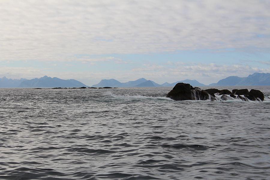 Vinjesjøen Rorbuer