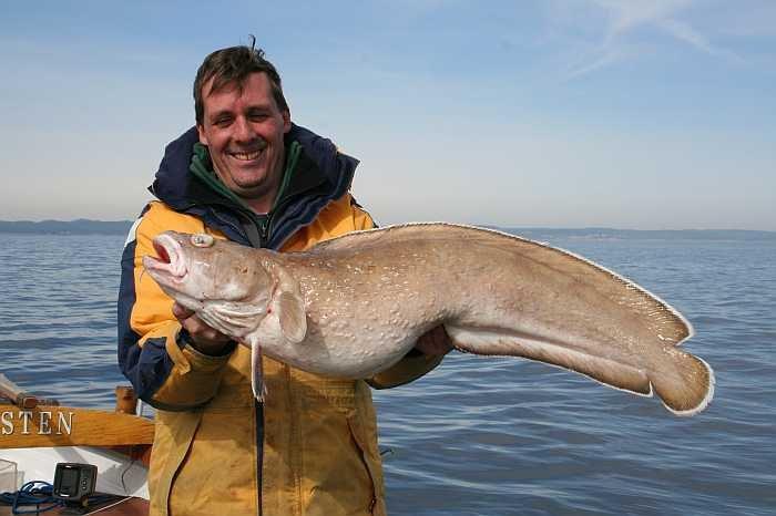 Lumb beim Naturköderfischen