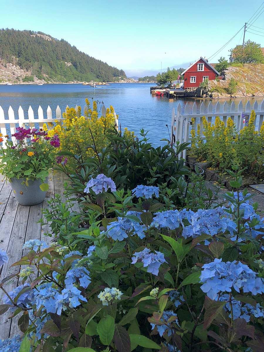 Der kleine Garten des Hauses ist einfach zauberhaft!