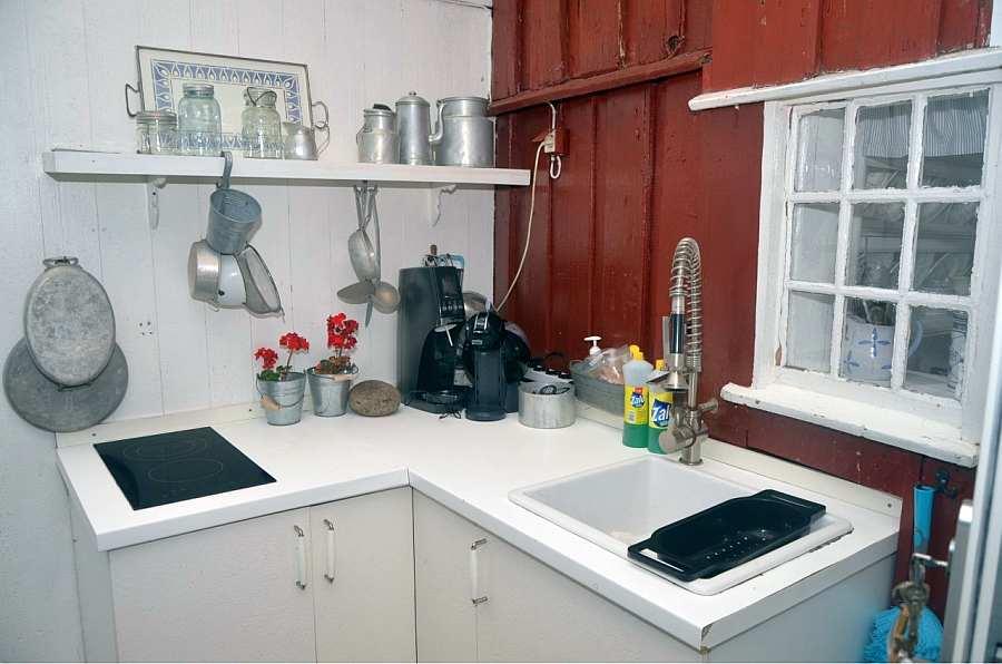 Die Außenküche verfügt über einen Ceranherd, eine Spüle und einen Kaffeeautomaten