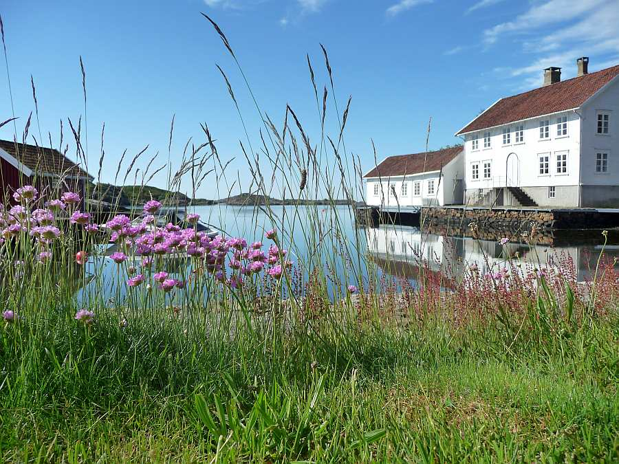 Blick vom Haus auf die kleine Bucht