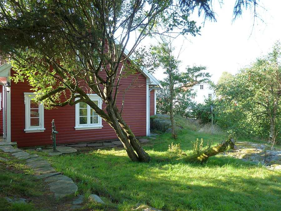 Der urige Naturgarten hinter dem Haus