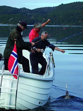 Auf diesem Angelboot finden problemlos bis zu 6 Personen Platz