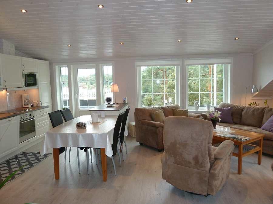 Der Wohnbereich geht in die offene Studioküche über