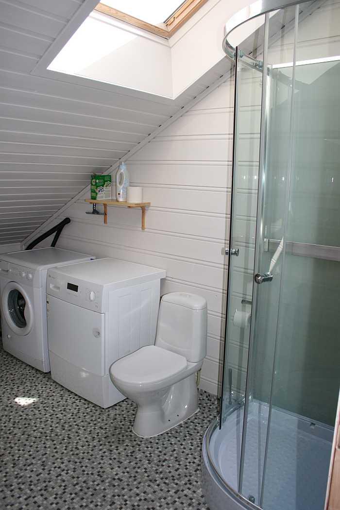 Das Bad des Hauses mit Waschbecken, Dusche, WC, Waschmaschine und Trockner