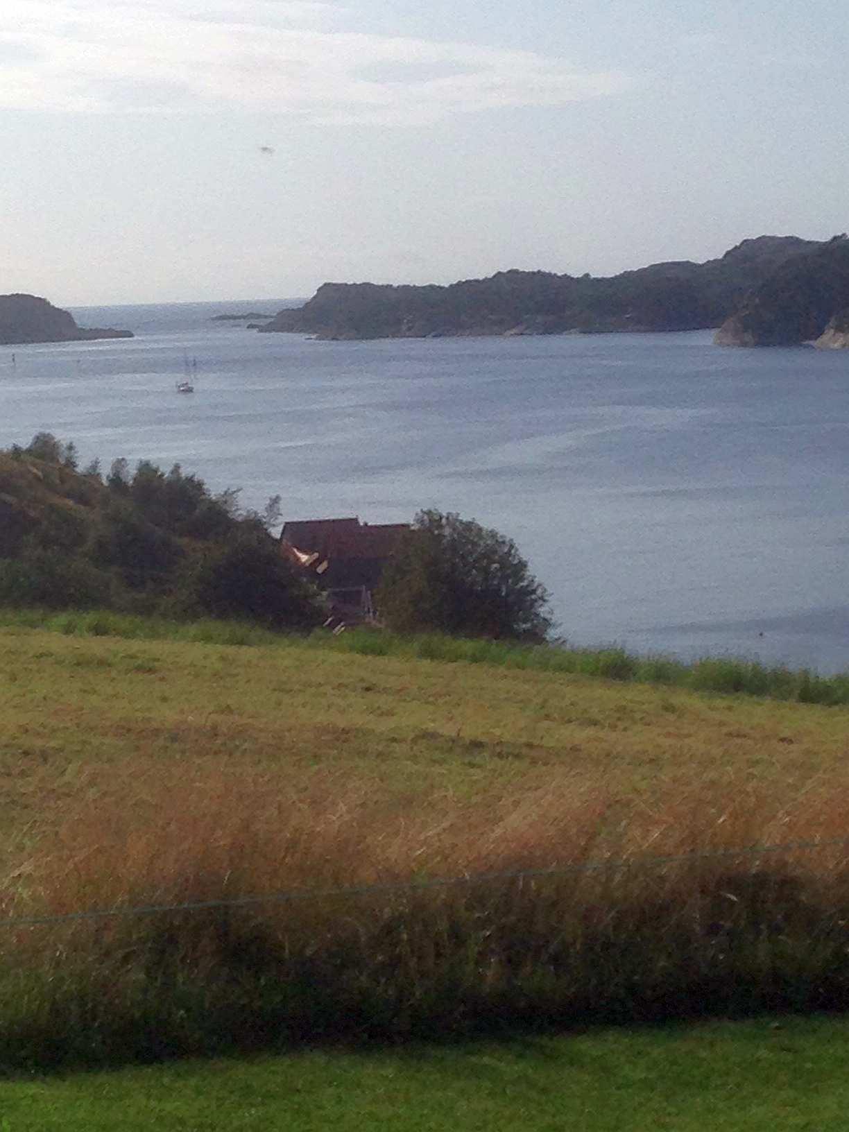 Blich auf den Ausgang des Fjords Nordra Sund von der Insel Eigerøya aus