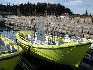 Die Bootsflotte liegt unmittelbar vor den Wohnungen