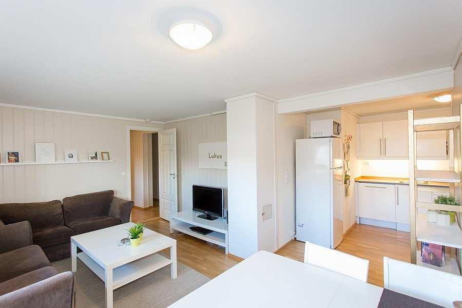 Der freundliche und helle Wohnbereich und rechts die offene Studioküche der Ferienwohnung