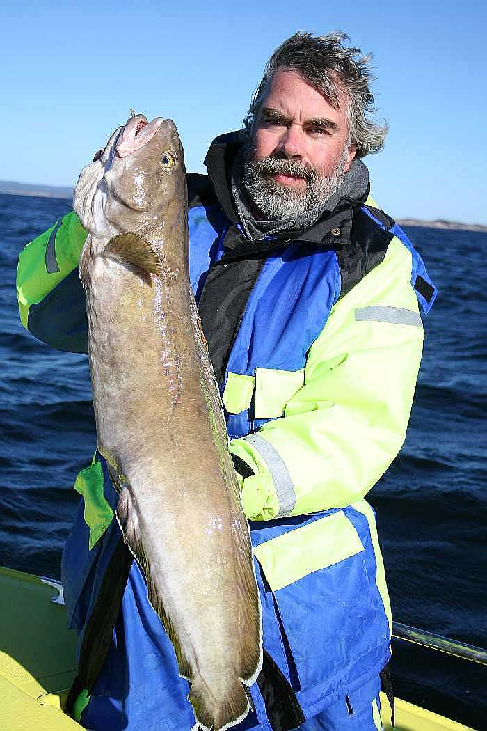 Ein schöner Lindesnes-Lumb. Das Revier beherbergt noch viele andere Fischarten. Lassen Sie sich überraschen!