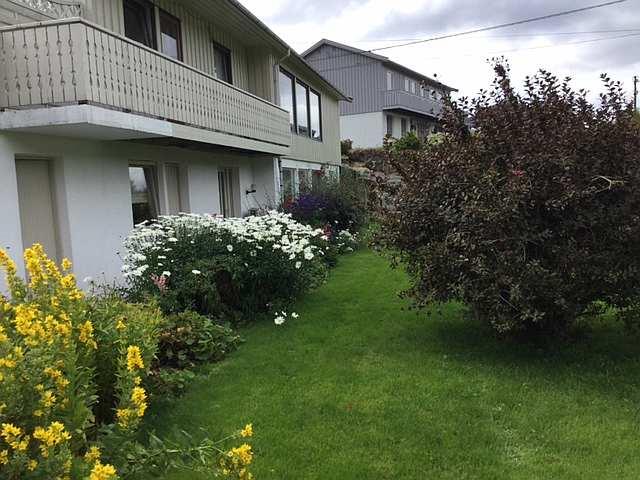 Von der Wohnung hat man direkten Zugang zum Garten