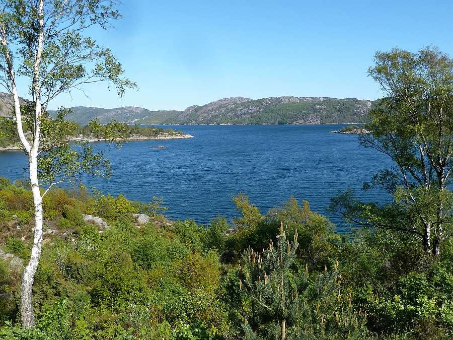 Blick auf den Grønnsfjord Richtung Norden