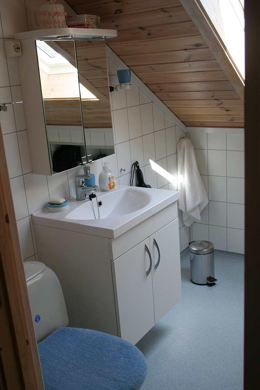 Das Bad in der Wohnung Turid mit Dusche und WC