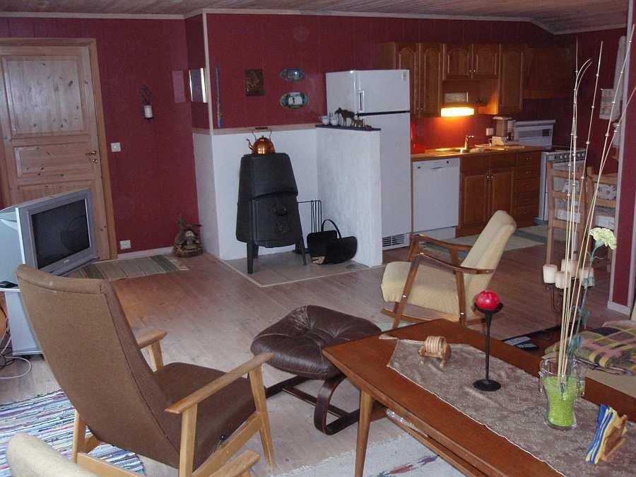 Blick in den Wohnbereich mit mit angrenzender offener Studioküche