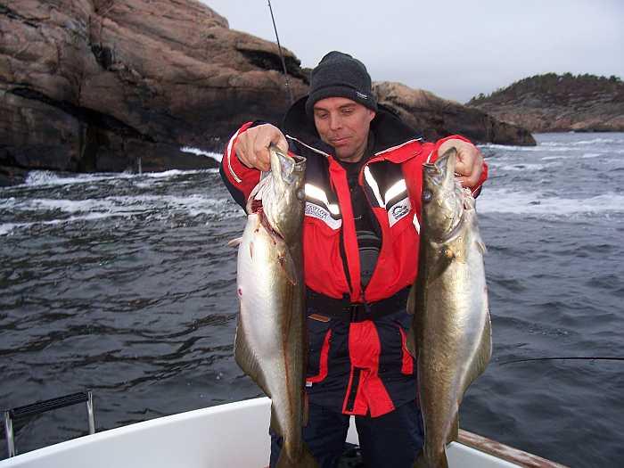 Hier finden Sie beste Bedingungen zum Fischen auf die kampfstarken Pollack