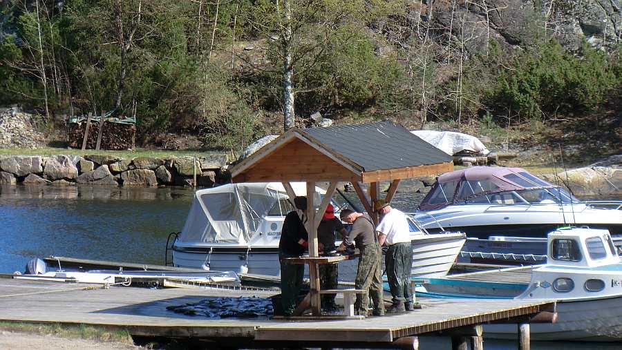 Erfolgreiche Angler filetieren Ihren Fisch am Filetierplatz