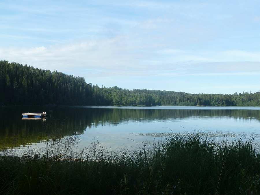 Blick auf den See vom Ufer beim Haus