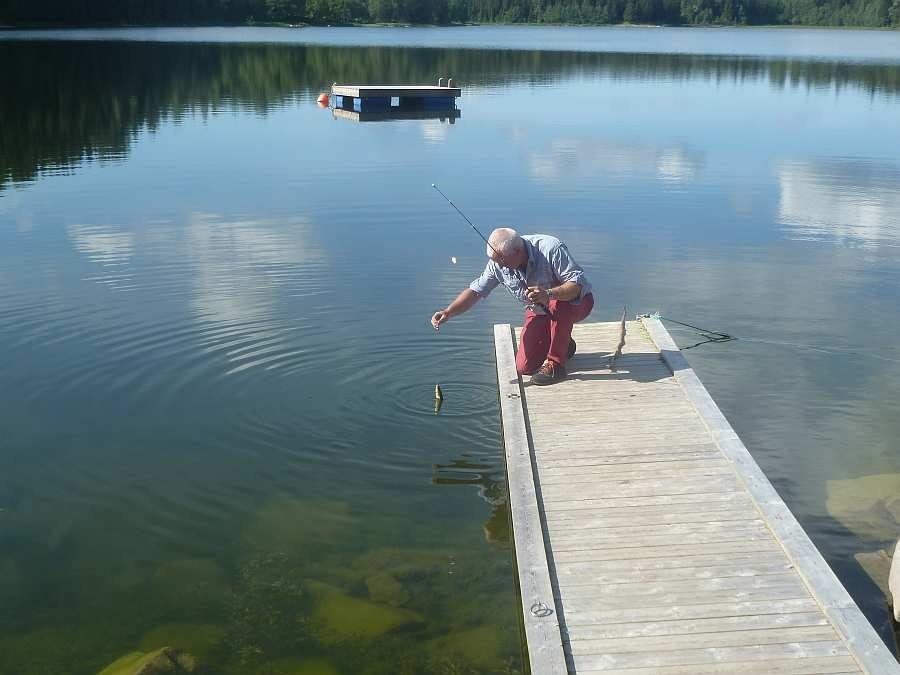 Angeln vom Steg auf Weißfische