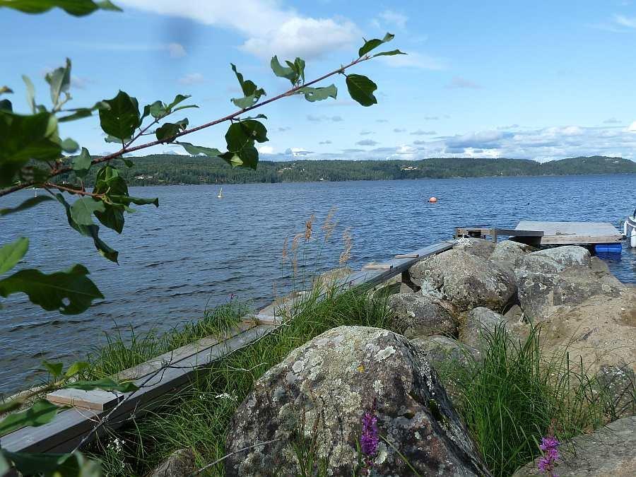 Blick vom Bootsliegeplatz auf den See