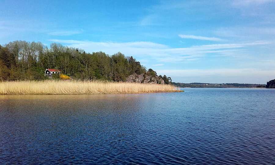 Beste Angelbedingungen Anfang Mai. Das Gewässer bietet kilometerlange Schlilfgürtel