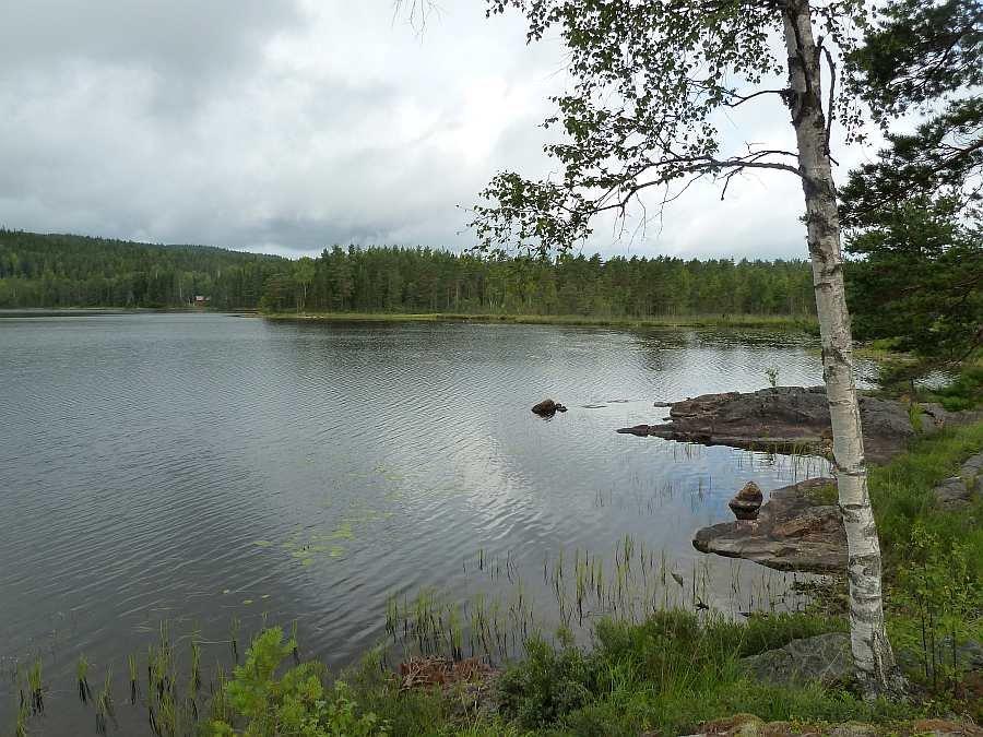 Blick vom Haus auf den nördlichen Teil des Sees