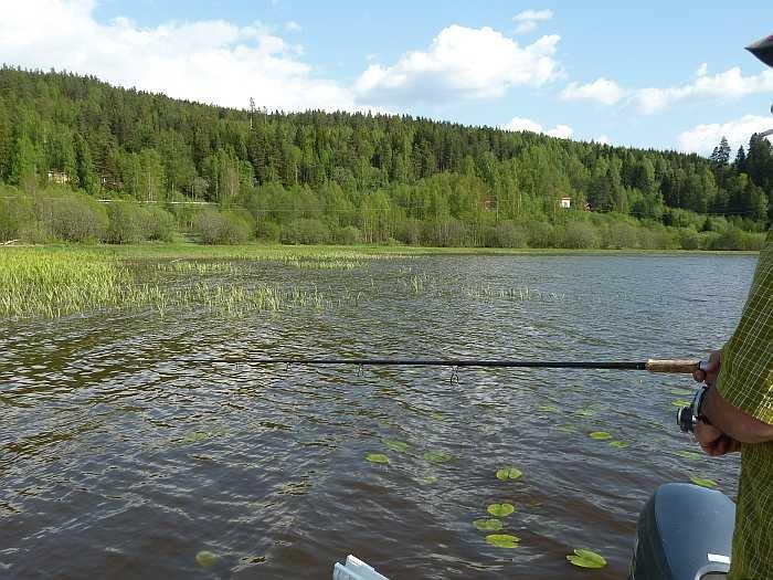 Den See zeichnen sehr viele Flachwasserzonen aus