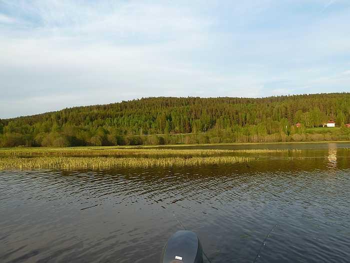 Flachwasserzone - perfekt im Frühjahr
