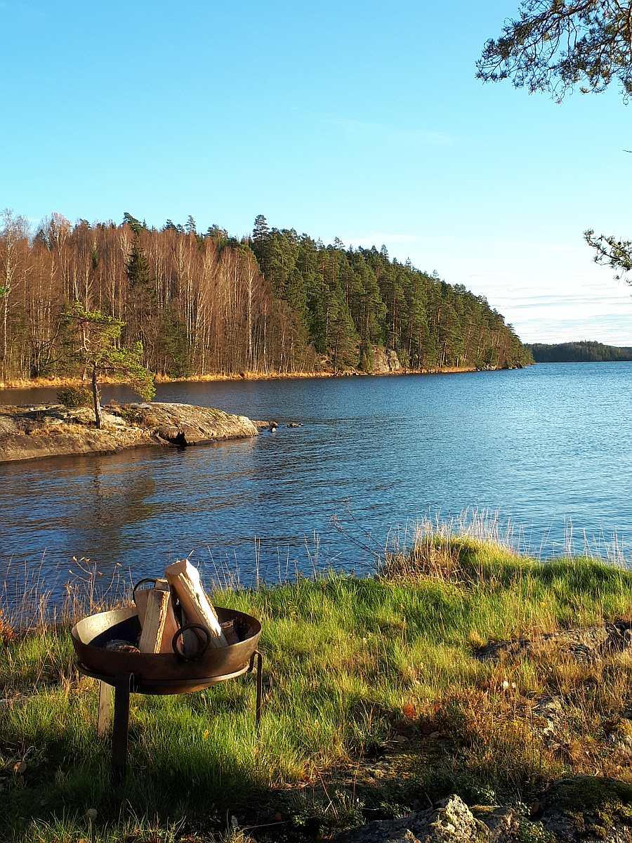 Das Grundstück des Hauses ist vollkommen naturbelassen - Blick vom Grundstück auf den See
