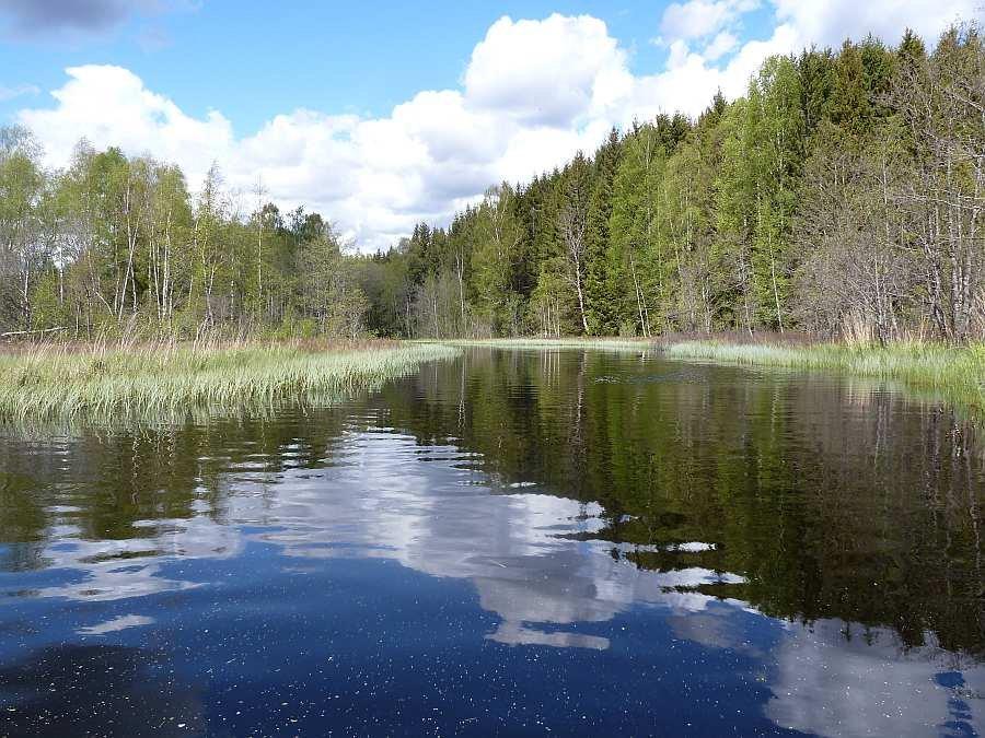 Der Flußeinlauf im Norden des Sees Rømsjøen