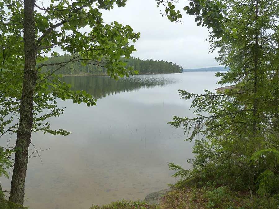 Blick vom Grillplatz auf den See... hier sollten Sie beim Grillen eine Rute auslegen!!