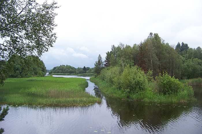 Der See bietet jede Menge verkrautete Flachwasserzonen