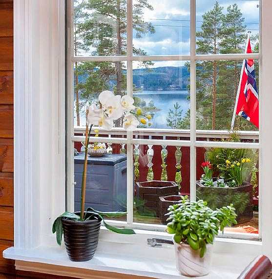 Blick aus dem Wohnraum auf den See